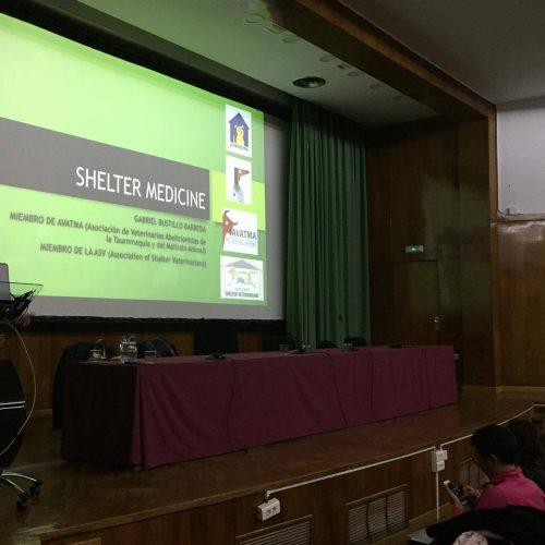 Ciclo formativo sobre CER de la Universidad Complutense de Madrid